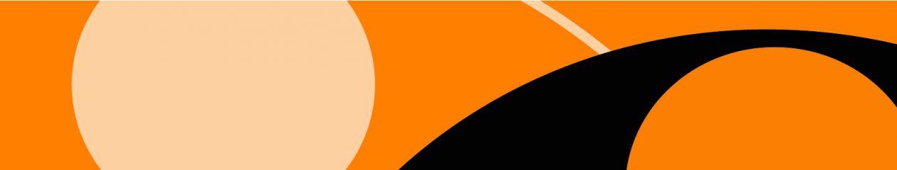LA NOCHE DEL LORO